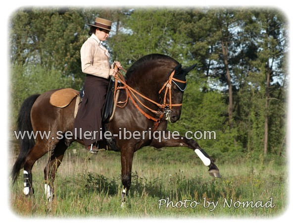 andalusian saddlery
