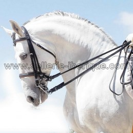 Snaffle bridle english...