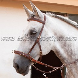 Cavesson-bridle (mediacan)...