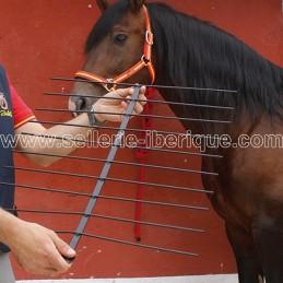 Gabarit métallique pour dos de cheval