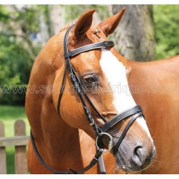 Snaffle bridle english with golden piping Protanner