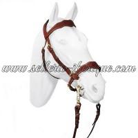 promotions pour le cheval